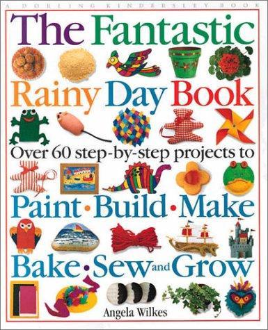 The fantastic rainy day book