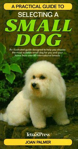 A Practical Guide to Selecting a Small Dog