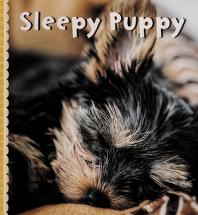 Cover of: Sleepy puppy |